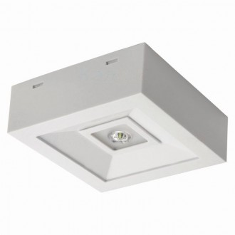 KANLUX 18640 | Tric-Powerled-NT Kanlux núdzové osvetlenie svietidlo montovateľné na strop alebo na stenu 1x LED 200lm 6000-8000K IP41 biela