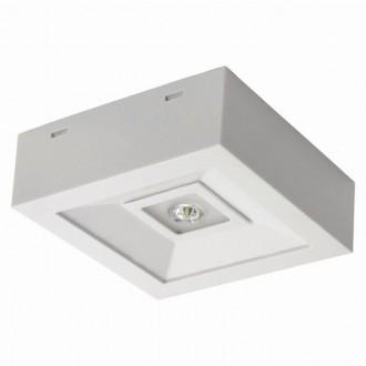 KANLUX 18642 | Tric-Powerled-NT Kanlux núdzové osvetlenie svietidlo montovateľné na strop alebo na stenu 1x LED 200lm 6000-8000K IP41 biela