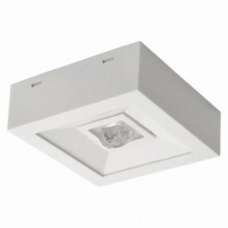 KANLUX 18644 | Tric-Powerled-NT Kanlux núdzové osvetlenie svietidlo montovateľné na strop alebo na stenu 1x LED 200lm 6000-8000K IP41 biela