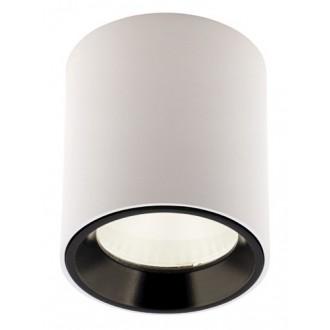 MAXLIGHT C0155   Tub-MX Maxlight