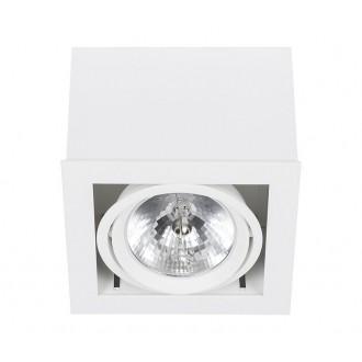 NOWODVORSKI 6455 | BoxN Nowodvorski stropné svietidlo otáčateľný svetelný zdroj 1x G53 / AR111 biela