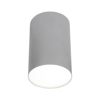 NOWODVORSKI 6531 | Point_Plexi Nowodvorski stropné svietidlo 1x E27 strieborný, biela