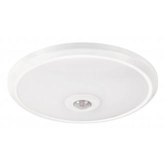 RABALUX 2498 | Gabriel Rabalux stenové, stropné svietidlo pohybový senzor 1x LED 720lm 4000K biela